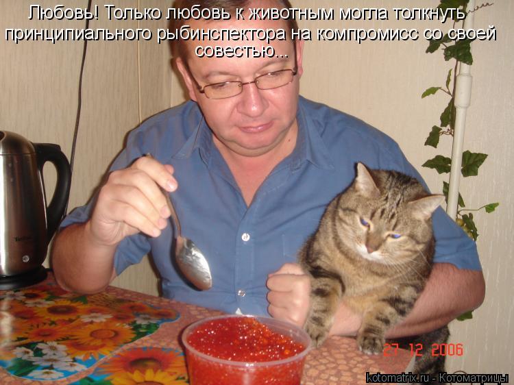 Котоматрица: Любовь! Только любовь к животным могла толкнуть  принципиального рыбинспектора на компромисс со своей совестью...