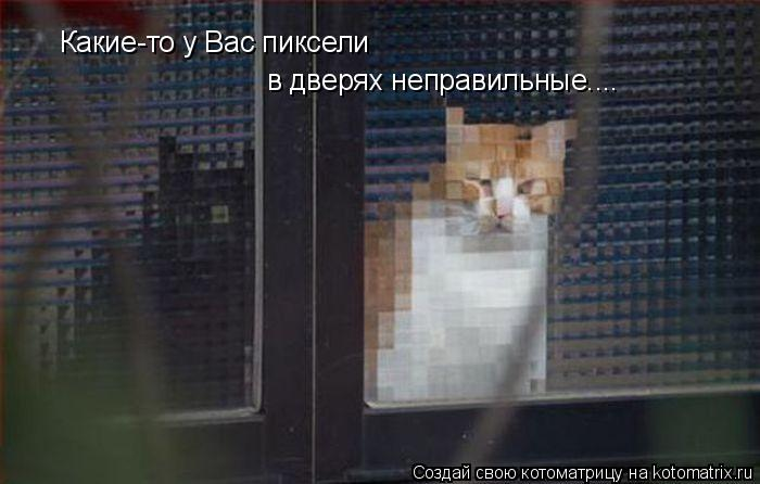 Котоматрица: Какие-то у Вас пиксели в дверях неправильные....