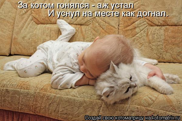 Котоматрица: За котом гонялся - аж устал И уснул на месте как догнал.