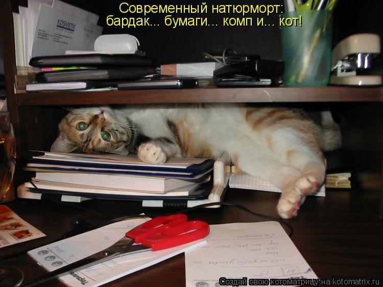Котоматрица: Современный натюрморт: бардак... бумаги... комп и... кот!
