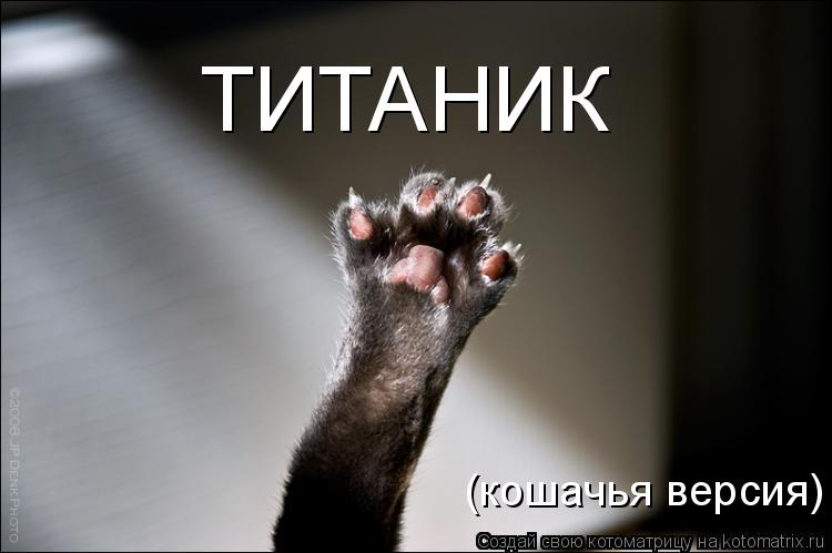 Котоматрица: ТИТАНИК (кошачья версия)