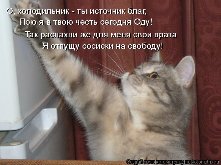 О, холодильник - ты источник благ, Пою я в твою честь сегодня Оду! Так