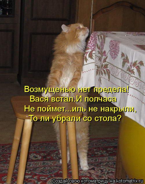 Котоматрица: Возмущенью нет предела! Вася встал.И полчаса Не поймет...иль не накрыли, То ли убрали со стола?