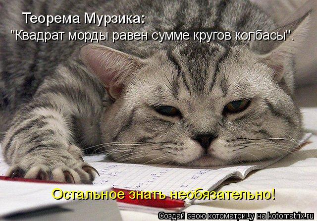 """Котоматрица: Теорема Мурзика: """"Квадрат морды равен сумме кругов колбасы"""". Остальное знать необязательно!"""