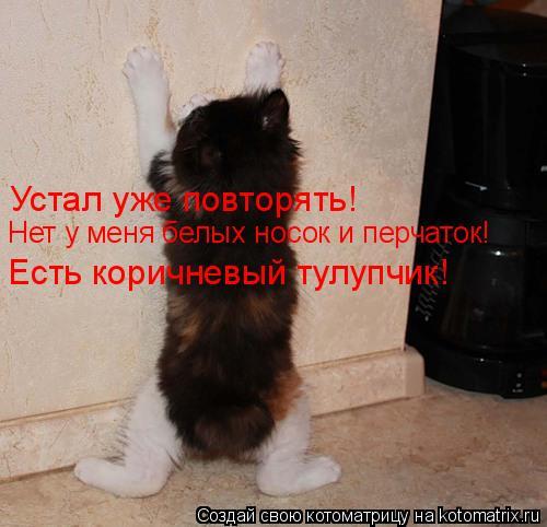 Устал уже повторять! Нет у меня белых носок и перчаток! Есть коричневы