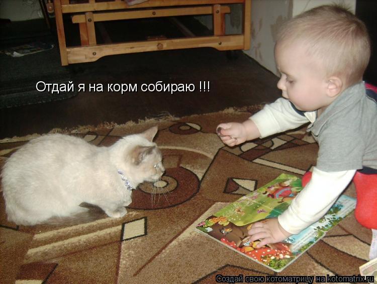 Котоматрица: Отдай я на корм собираю !!!