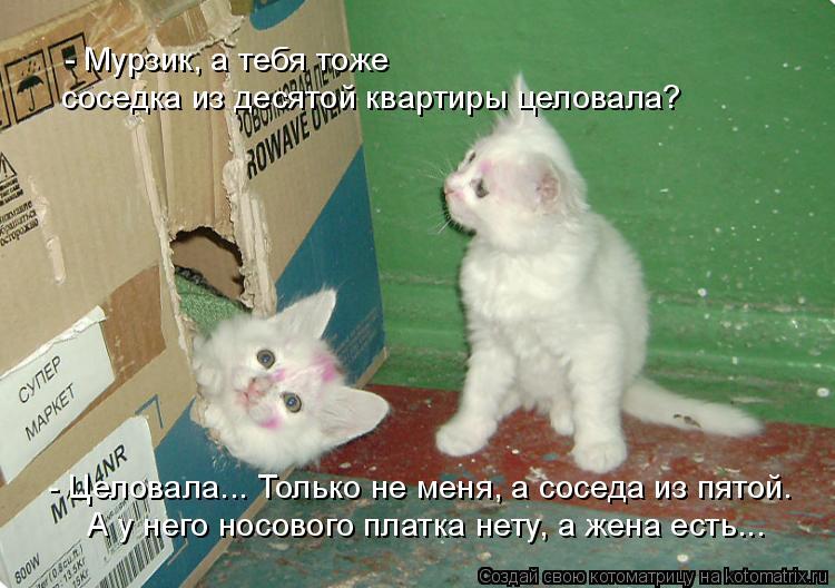 Котоматрица: - Мурзик, а тебя тоже   соседка из десятой квартиры целовала?  А у него носового платка нету, а жена есть...  - Целовала... Только не меня, а соседа