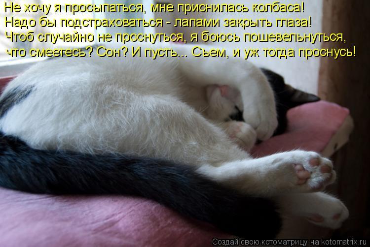 Котоматрица: Не хочу я просыпаться, мне приснилась колбаса! Надо бы подстраховаться - лапами закрыть глаза! Чтоб случайно не проснуться, я боюсь пошевель