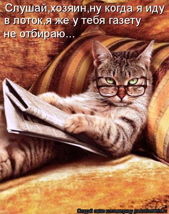 Котоматрица: Слушай,хозяин,ну когда я иду в лоток,я же у тебя газету не отбираю...