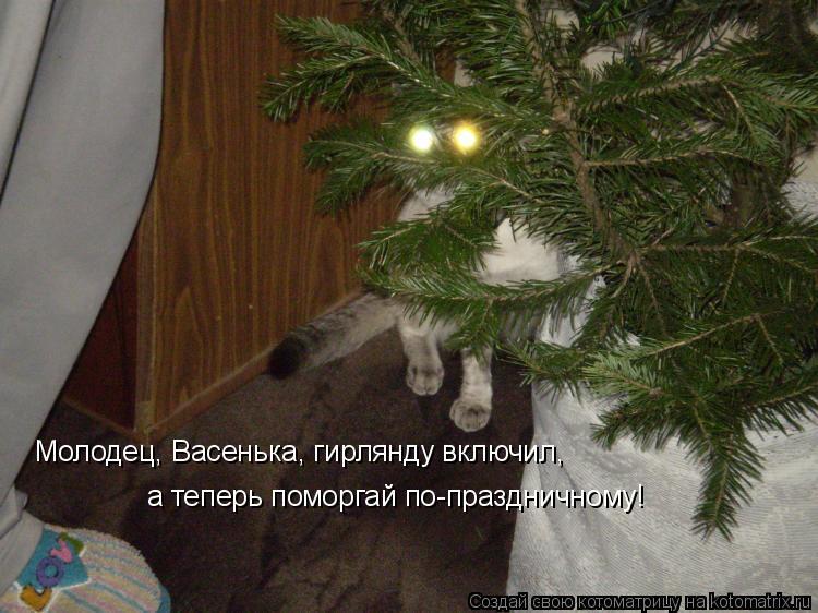 Котоматрица: Молодец, Васенька, гирлянду включил, а теперь поморгай по-праздничному!