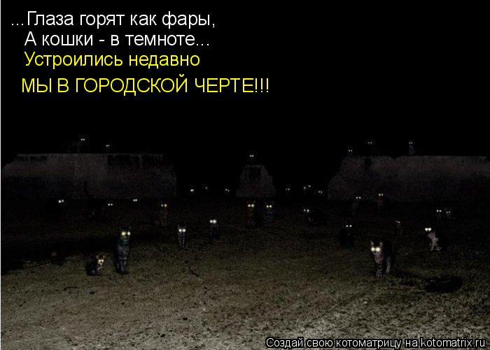 Котоматрица: ...Глаза горят как фары, А кошки - в темноте... Устроились недавно МЫ В ГОРОДСКОЙ ЧЕРТЕ!!!