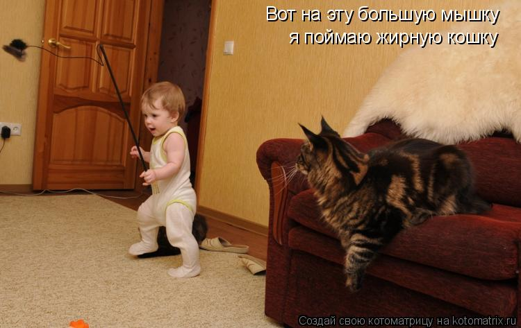 Вот на эту большую мышку я поймаю жирную кошку
