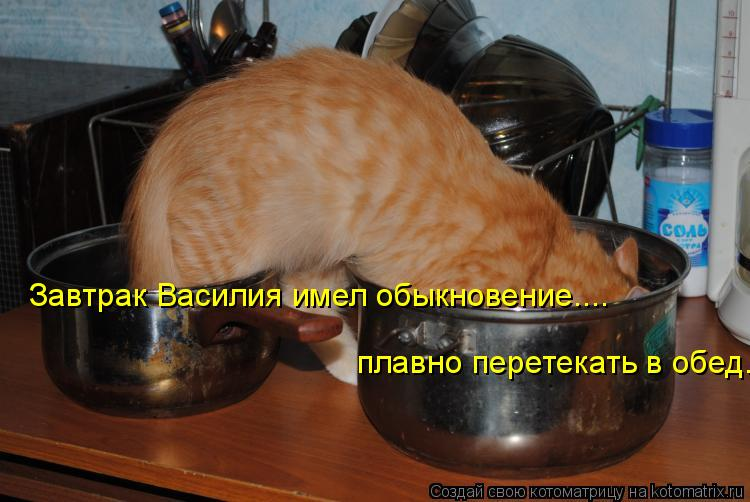 Завтрак Василия имел обыкновение.... плавно перетекать в обед.
