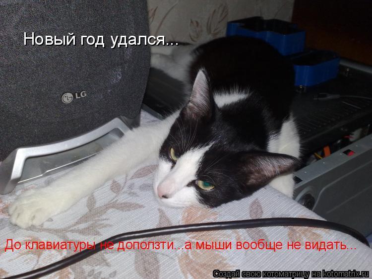 Котоматрица: Новый год удался... До клавиатуры не доползти...а мыши вообще не видать...