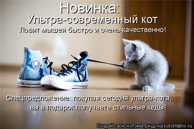 Котоматрица: Новинка: Ультра-современный кот Спецпредложение: покупая сегодня ультра-кота, Ловит мышей быстро и очень качественно! вы в подарок получае