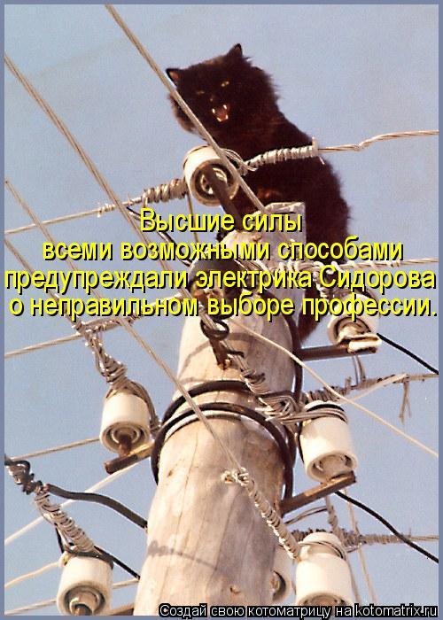Высшие силы всеми возможными способами предупреждали электрика Сидоров
