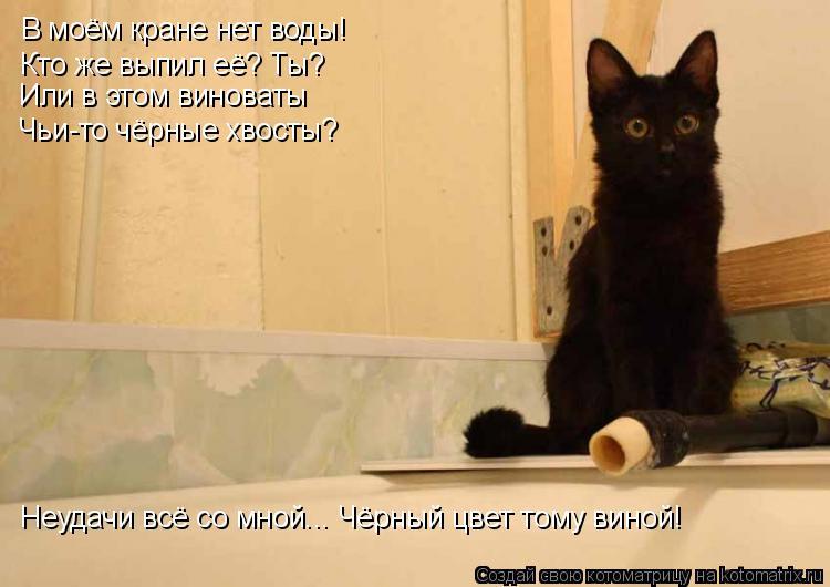 Котоматрица: В моём кране нет воды! Кто же выпил её? Ты? Или в этом виноваты Чьи-то чёрные хвосты? Неудачи всё со мной... Чёрный цвет тому виной!