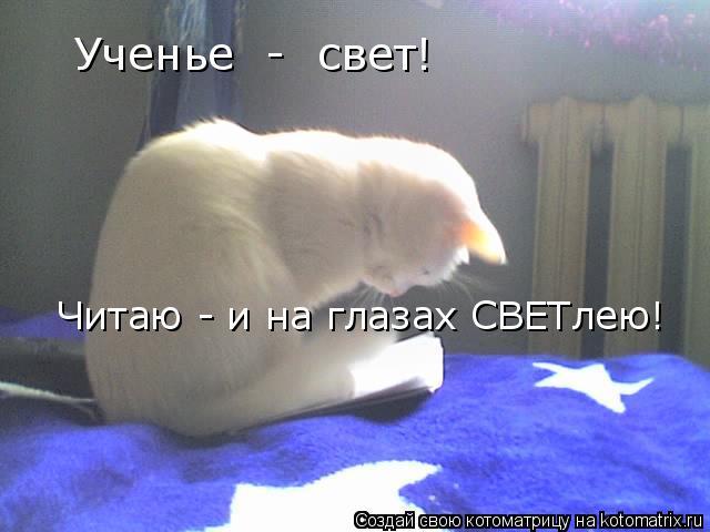 Котоматрица: Ученье  -  свет! Читаю - и на глазах СВЕТлею!