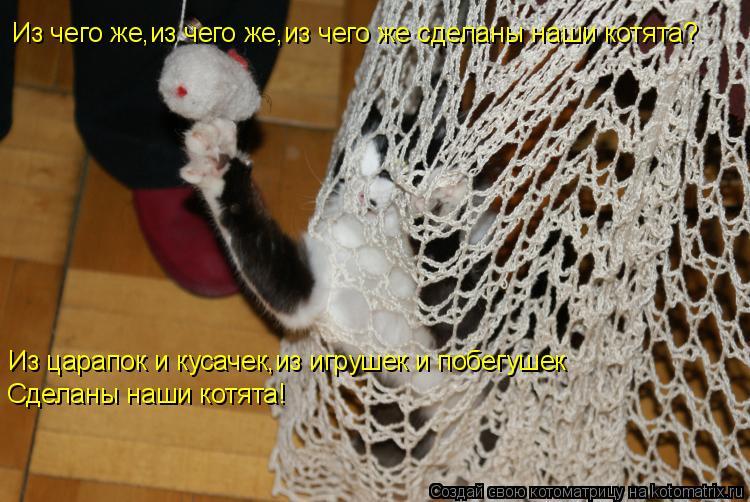 Котоматрица: Из чего же,из чего же,из чего же сделаны наши котята? Из царапок и кусачек,из игрушек и побегушек Сделаны наши котята!