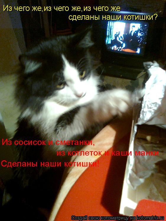 Котоматрица: Из чего же,из чего же,из чего же сделаны наши котишки? Из сосисок и сметанки, из котлеток и каши манки Сделаны наши котишки!