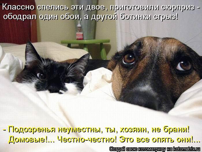 http://kotomatrix.ru/images/lolz/2011/01/17/795109.jpg