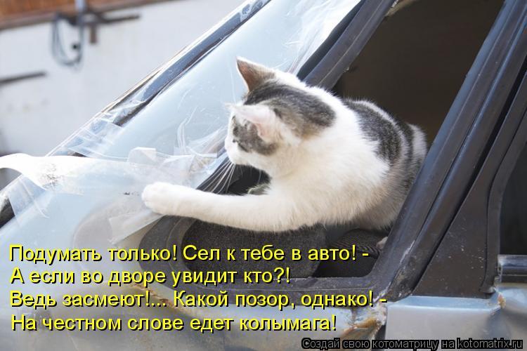 Котоматрица: Подумать только! Сел к тебе в авто! - А если во дворе увидит кто?! Ведь засмеют!... Какой позор, однако! - На честном слове едет колымага!