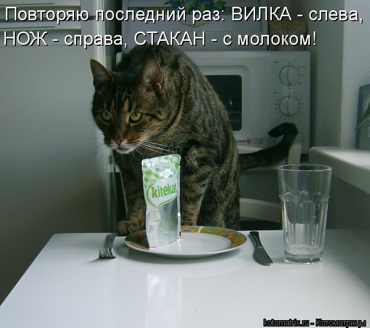 Котоматрица: Повторяю последний раз: ВИЛКА - слева, НОЖ - справа, СТАКАН - с молоком!