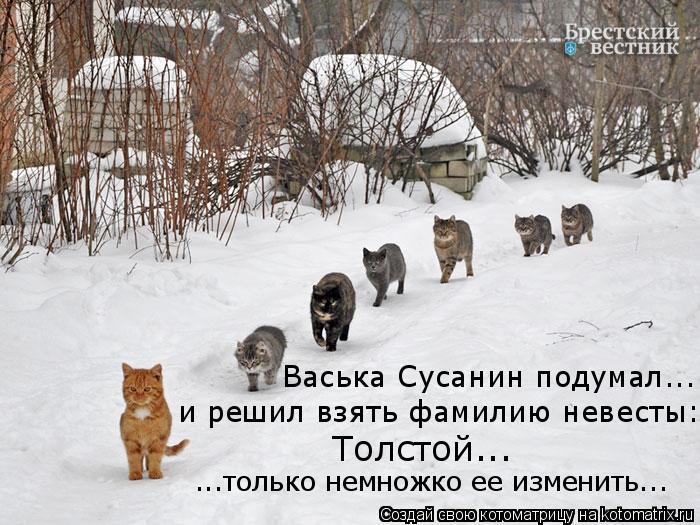 Котоматрица: ...только немножко ее изменить... Толстой...  Васька Сусанин подумал... и решил взять фамилию невесты: