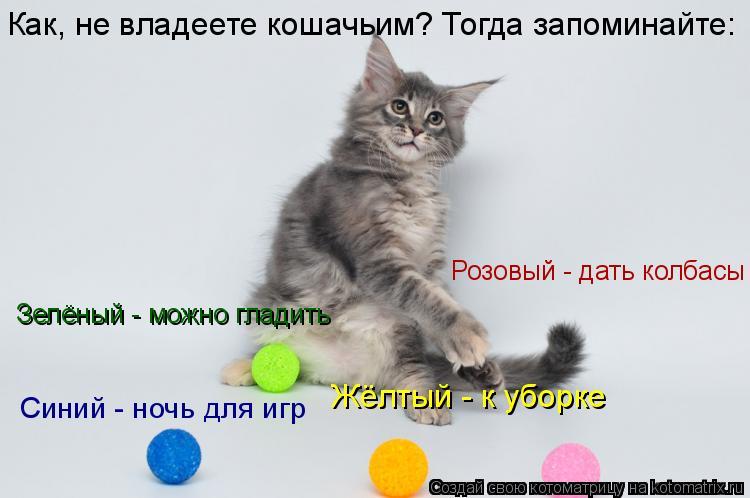 Котоматрица: Розовый - дать колбасы Жёлтый - к уборке Синий - ночь для игр Зелёный - можно гладить Как, не владеете кошачьим? Тогда запоминайте: