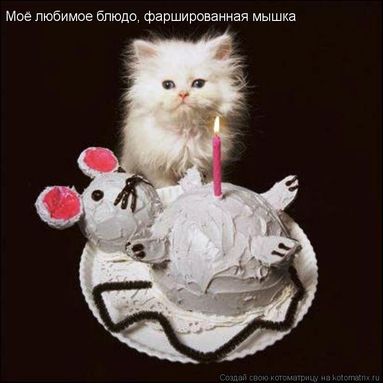 Котоматрица: Моё любимое блюдо, фаршированная мышка