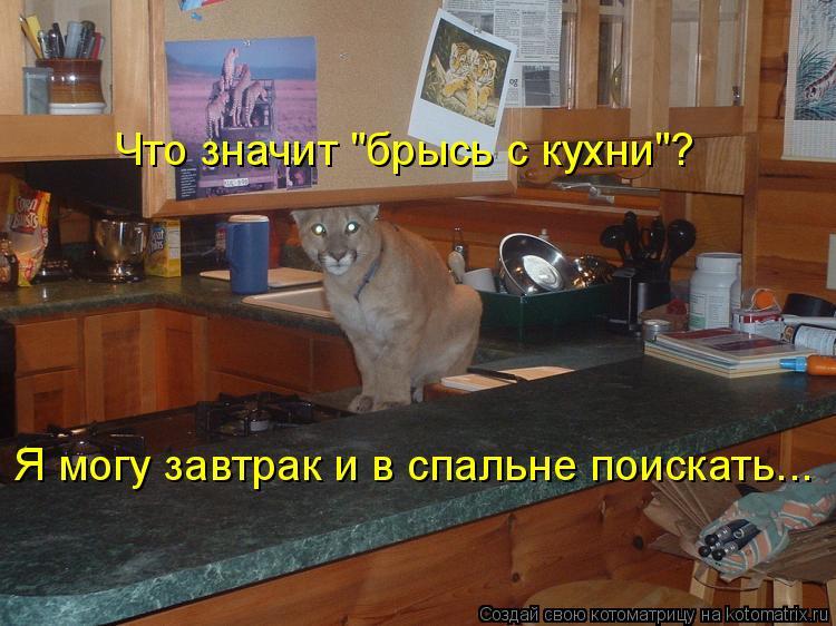 """Котоматрица: Я могу завтрак и в спальне поискать... Что значит """"брысь с кухни""""?"""