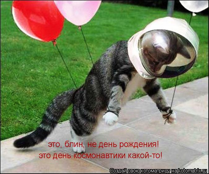 Котоматрица: это, блин, не день рождения! это день космонавтики какой-то!