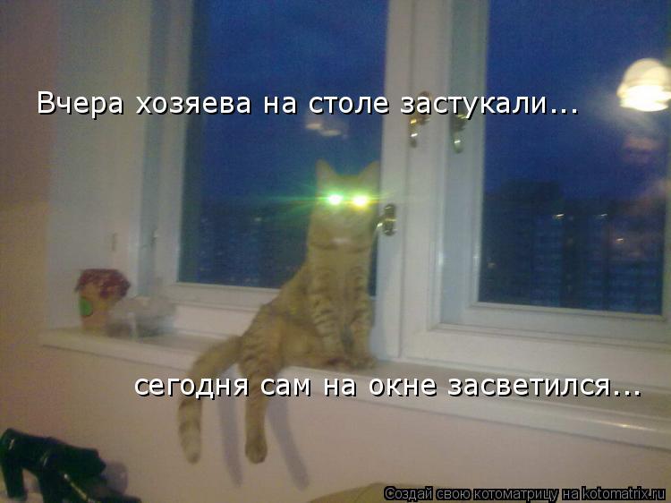 Котоматрица: Вчера хозяева на столе застукали... сегодня сам на окне засветился...