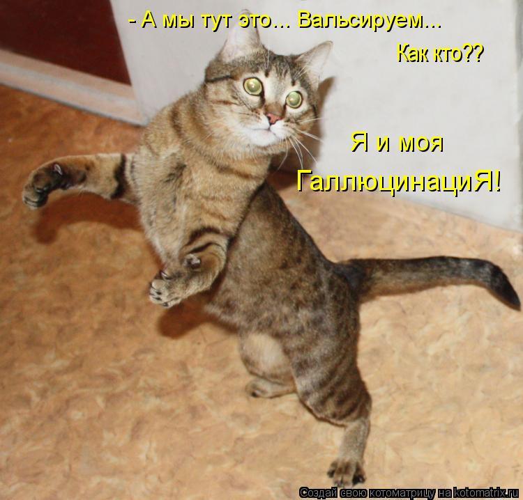 http://kotomatrix.ru/images/lolz/2011/01/20/797965.jpg