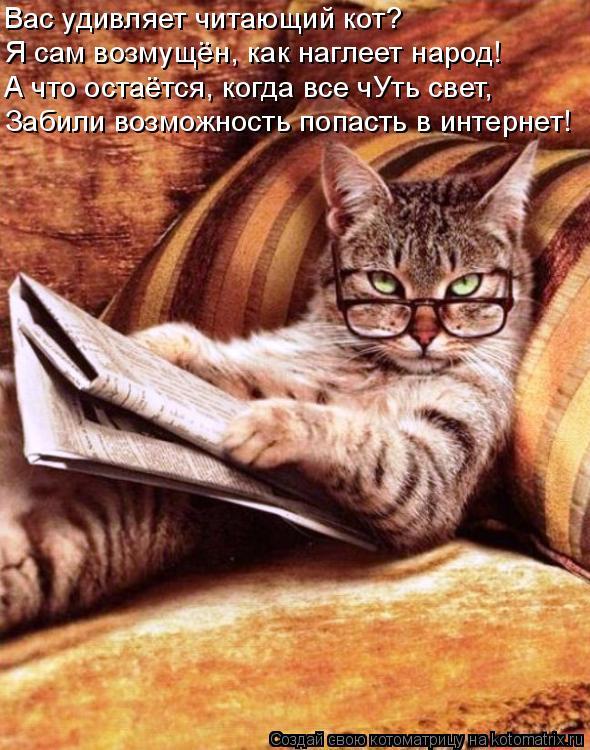 Котоматрица: Вас удивляет читающий кот? Я сам возмущён, как наглеет народ! А что остаётся, когда все чУть свет, Забили возможность попасть в интернет!
