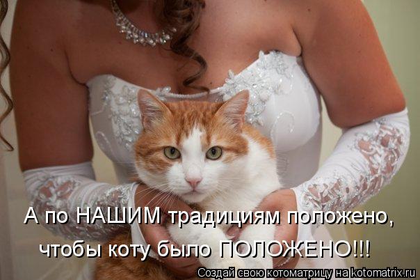 Котоматрица: А по НАШИМ традициям положено, чтобы коту было ПОЛОЖЕНО!!!