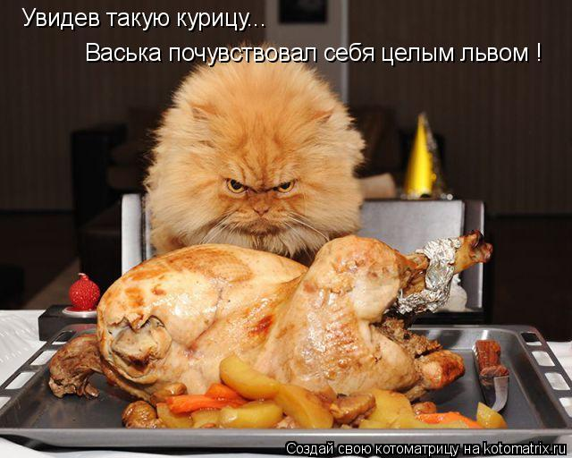 Котоматрица: Увидев такую курицу... Васька почувствовал себя целым львом !