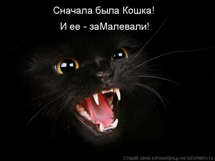 Котоматрица: Сначала была Кошка! И ее - заМалевали!
