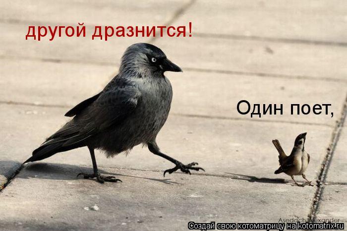 http://kotomatrix.ru/images/lolz/2011/01/21/798915.jpg