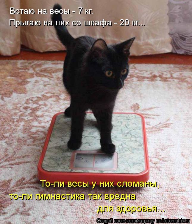 Котоматрица: Встаю на весы - 7 кг. Прыгаю на них со шкафа - 20 кг... То-ли весы у них сломаны, то-ли гимнастика так вредна для здоровья...