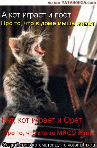 Котоматрица: А кот играет и поёт Про то, что в доме мышь живёт... Нет, кот играет и Орёт Про то, что кто-то МЯСО жрёт...
