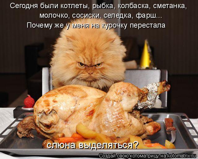 Котоматрица: Сегодня были котлеты, рыбка, колбаска, сметанка, молочко, сосиски, селедка, фарш... Почему же у меня на курочку перестала слюна выделяться?