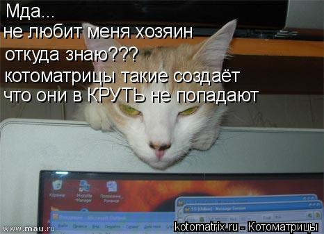 Котоматрица: Мда... не любит меня хозяин откуда знаю??? котоматрицы такие создаёт что они в КРУТЬ не попадают