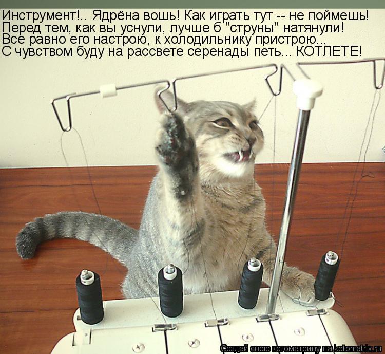 """Котоматрица: Инструмент!.. Ядрёна вошь! Как играть тут -- не поймешь! Перед тем, как вы уснули, лучше б """"струны"""" натянули! Все равно его настрою, к холодильни"""