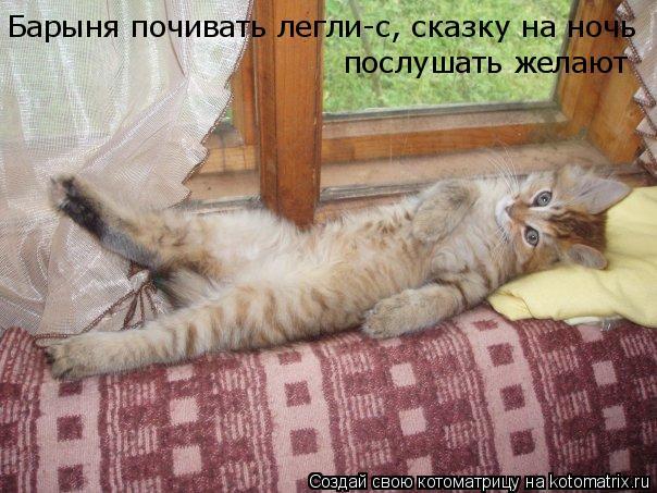 Котоматрица: Барыня почивать легли-с, сказку на ночь  послушать желают