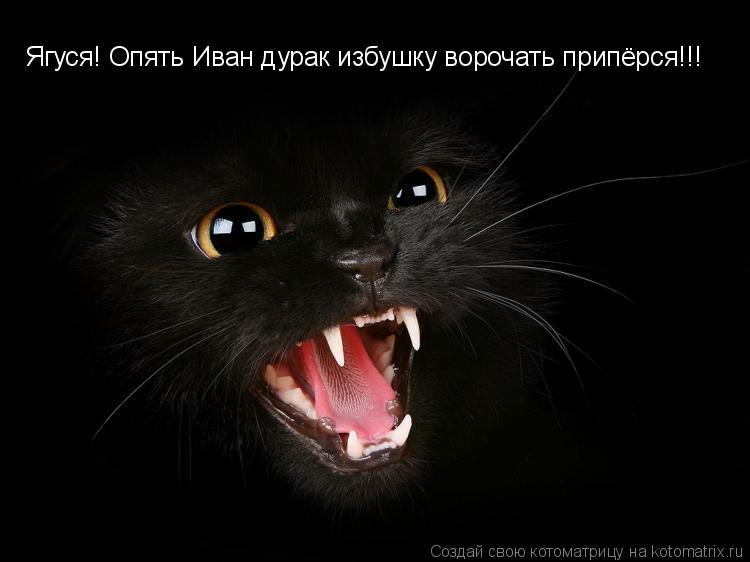 Котоматрица: Ягуся! Опять Иван дурак избушку ворочать припёрся!!!