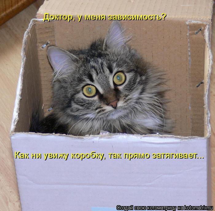 Котоматрица: Доктор, у меня зависимость?  Как ни увижу коробку, так прямо затягивает...