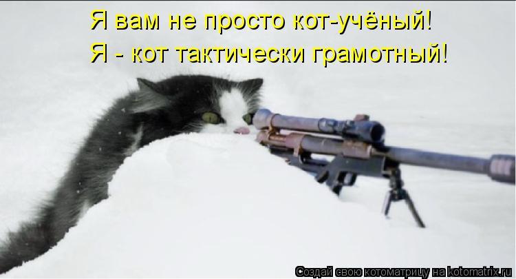 Я вам не просто кот-учёный! Я - кот тактически грамотный!