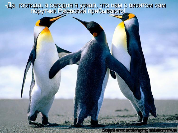 Котоматрица: -Да, господа, а сегодня я узнал, что нам с визитом сам порутчик Ржевский прибываютс!