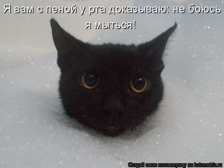 Я вам с пеной у рта доказываю: не боюсь я мыться!